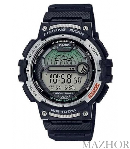 часы Casio Collection WS-1200H-1AVEF - Фото №1